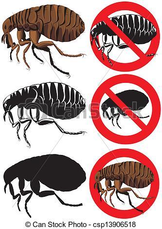 Vector Clip Art of flea.