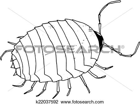 Clipart of beetle, mite k22037592.