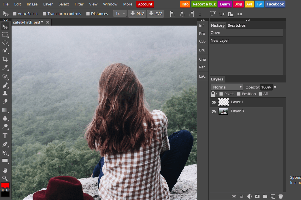 23 Free Online Photo Editors (Image Editing Websites).