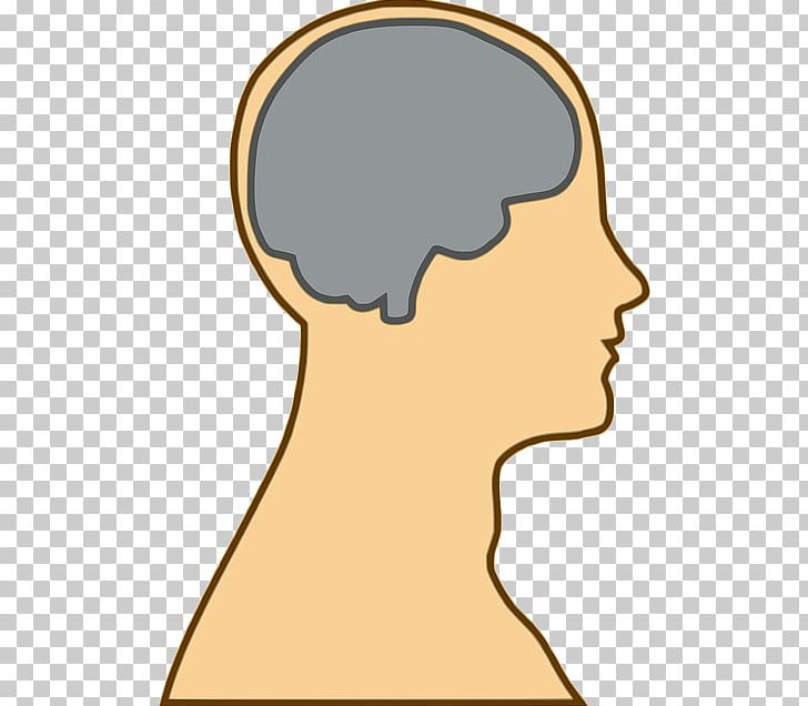 Human Brain Open Human Head PNG, Clipart, Brain, Cheek.
