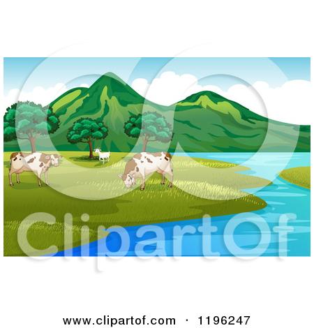Cartoon of Open Range Cows at a Lake.
