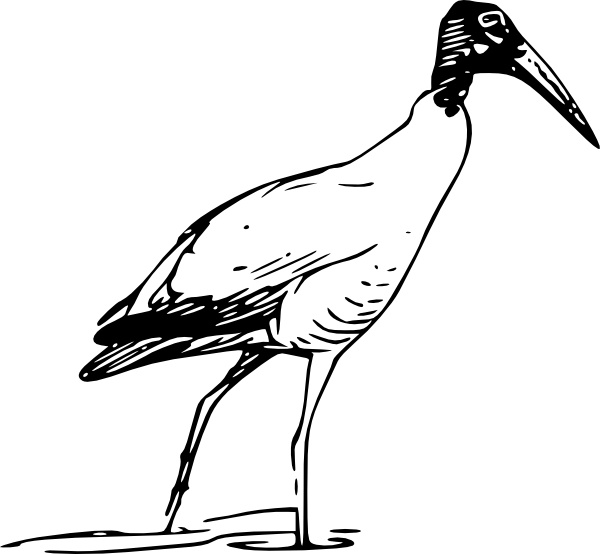 Ibis Bird Walking In Lake clip art Free vector in Open office.