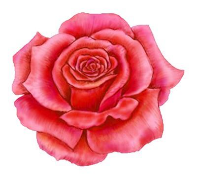 Red Rose Clip Art Tattoo Design.