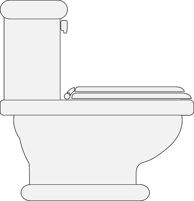 Free photo Lavatory Washroom Bathroom Hygiene Toilet Restroom.