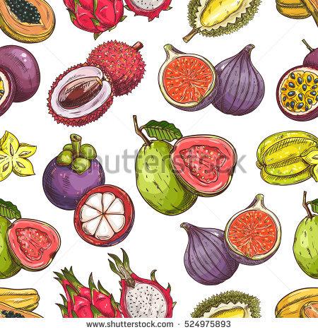 Durian Stock Vectors, Images & Vector Art.