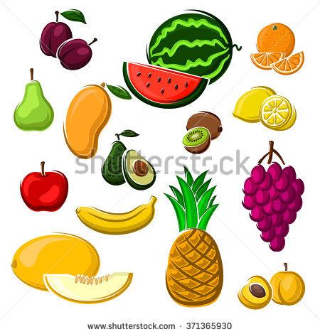 Fresh Avocado Fruit Pear Tropical Stock Photos, Royalty.