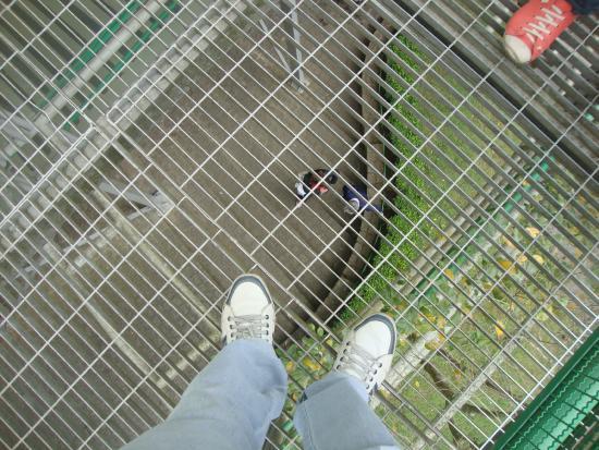 Foto tirada a partir do piso superior..