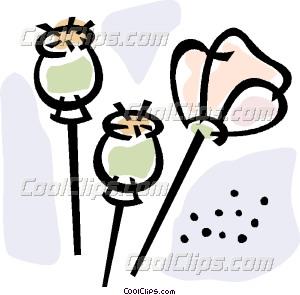 opium Vector Clip art.