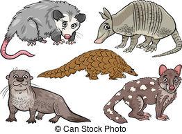 Opossum Clipart and Stock Illustrations. 146 Opossum vector EPS.