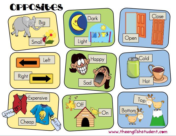 Esl Opposites Esl Synonyms Esl Vocabulary Comparatives Adjectives.