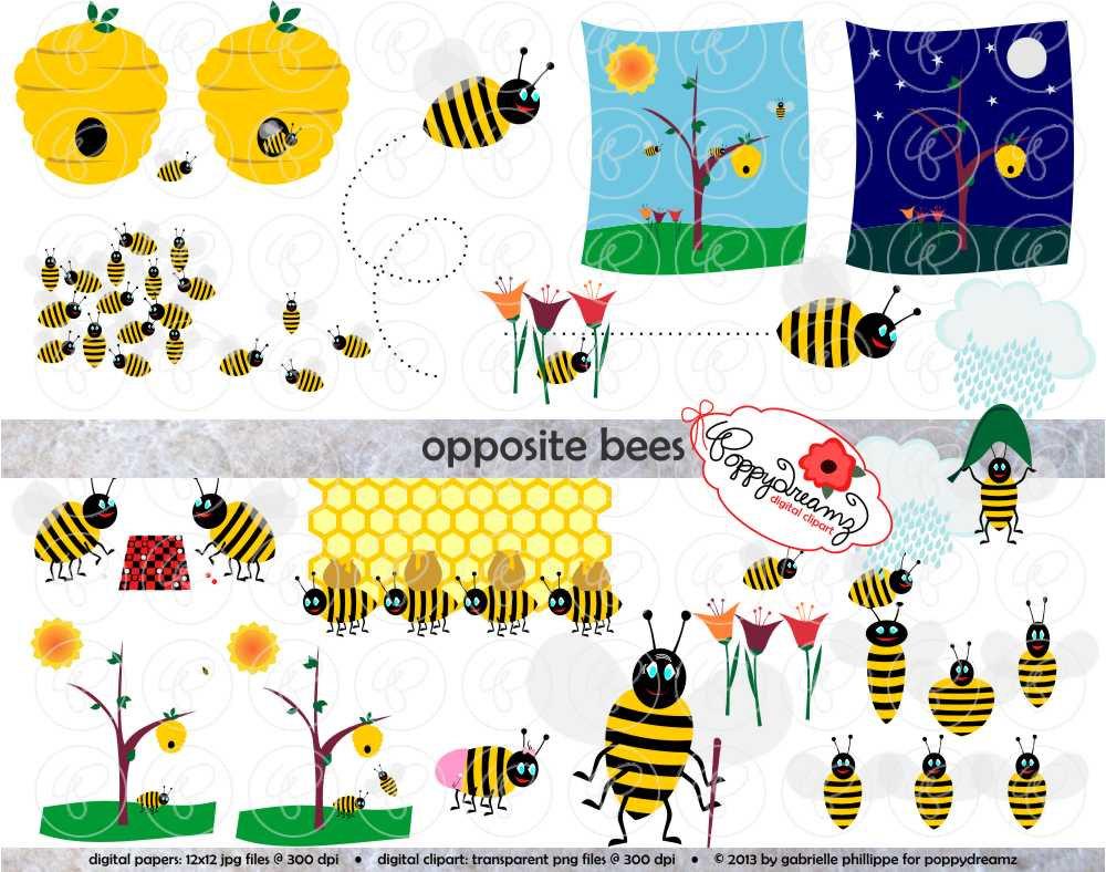 Opposite Bees Clipart: Digital Clip Art 300 dpi School by.