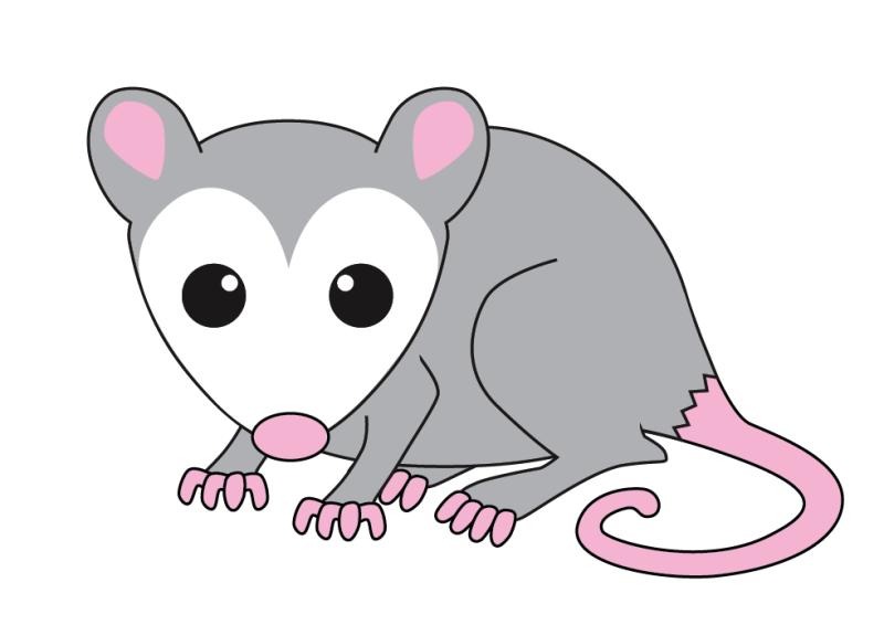 Free Opossum Clipart in 2019.