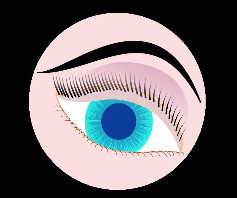 Optic Clip Art Download.
