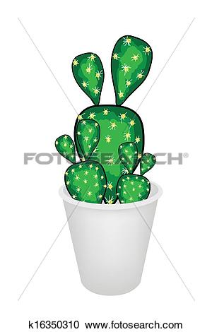 Clipart of Cactus Opuntia Microdasys in A Flower Pot k16350310.