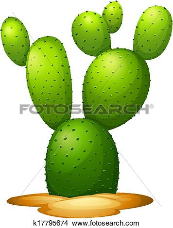 Clipart of Opuntia microdasy k17795674.