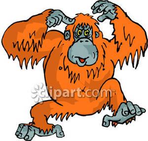 Orangutan Clip Art Free.