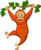 Orangutan Clip Art Illustrations. 450 orangutan clipart EPS vector.