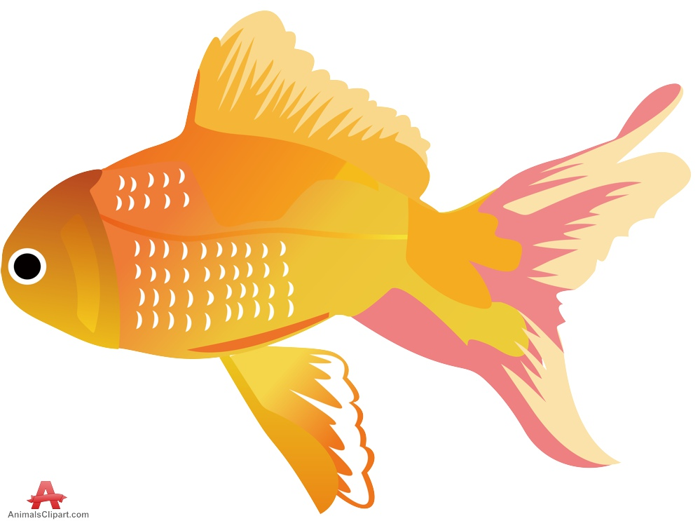 Fish Animals Clipart Gallery.