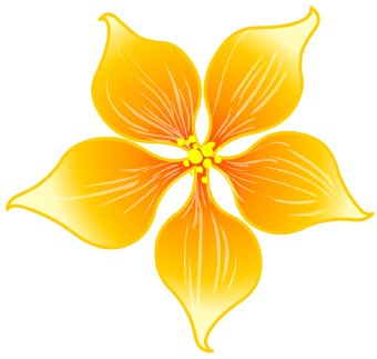Orange Flowers Clipart.