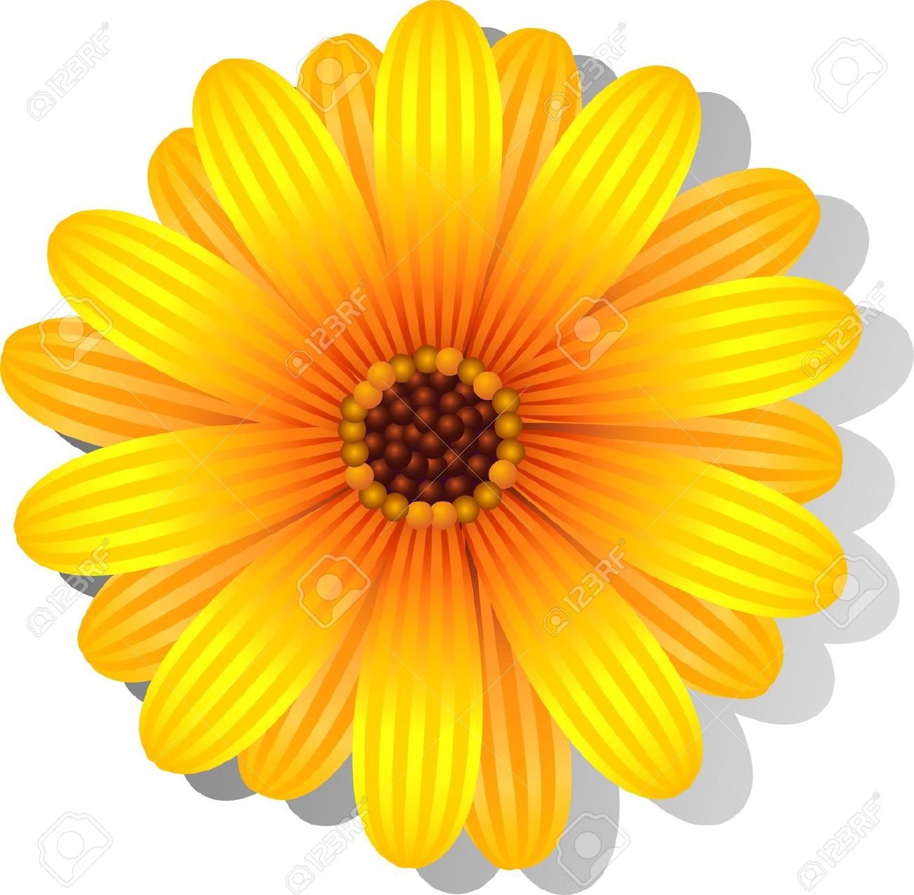 Beautiful yellow flowers clipart.