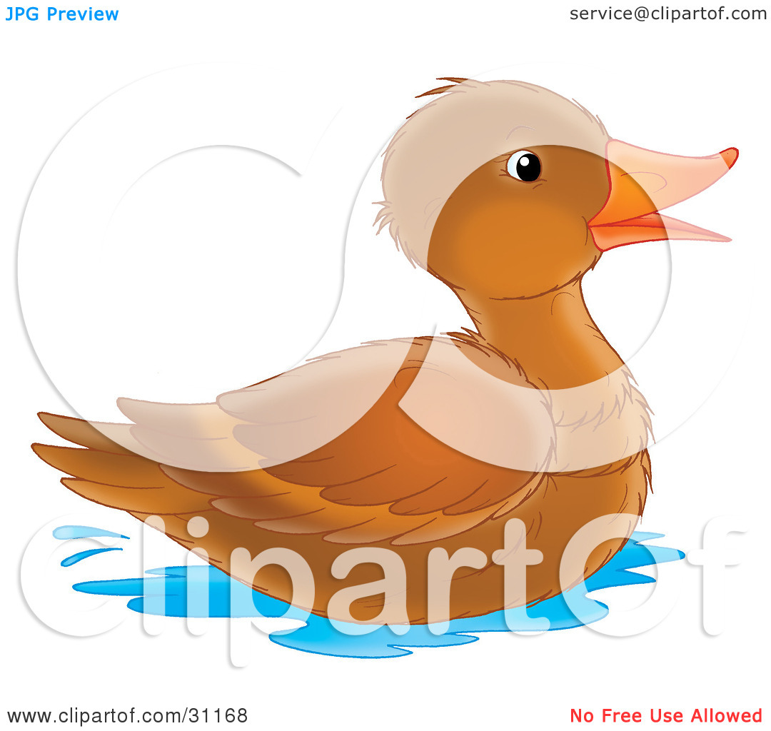 Clipart Illustration of a Happy Brown Duck With An Orange Beak.