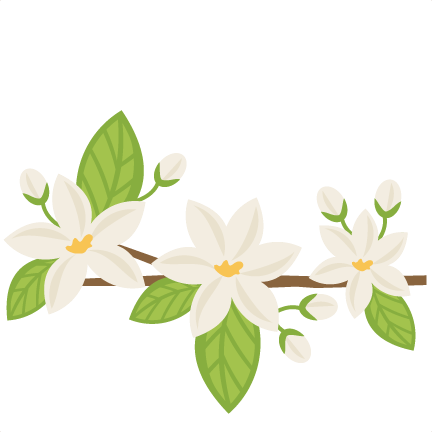 Orange Blossoms SVG..