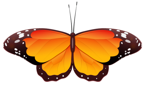 Blue And Orange Butterfly Clipart.