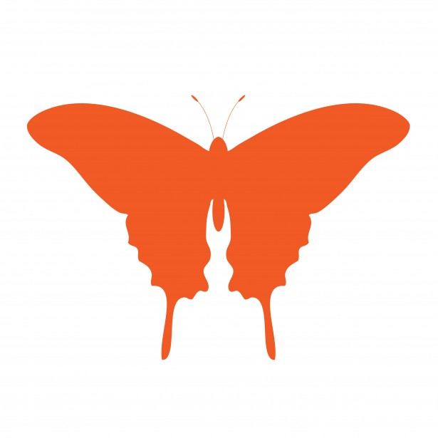 Orange Butterfly Clipart Free Stock Photo.