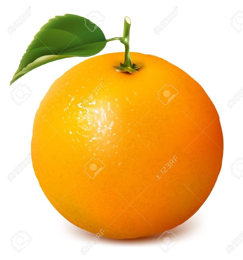 Best Orange Clipart #13379.