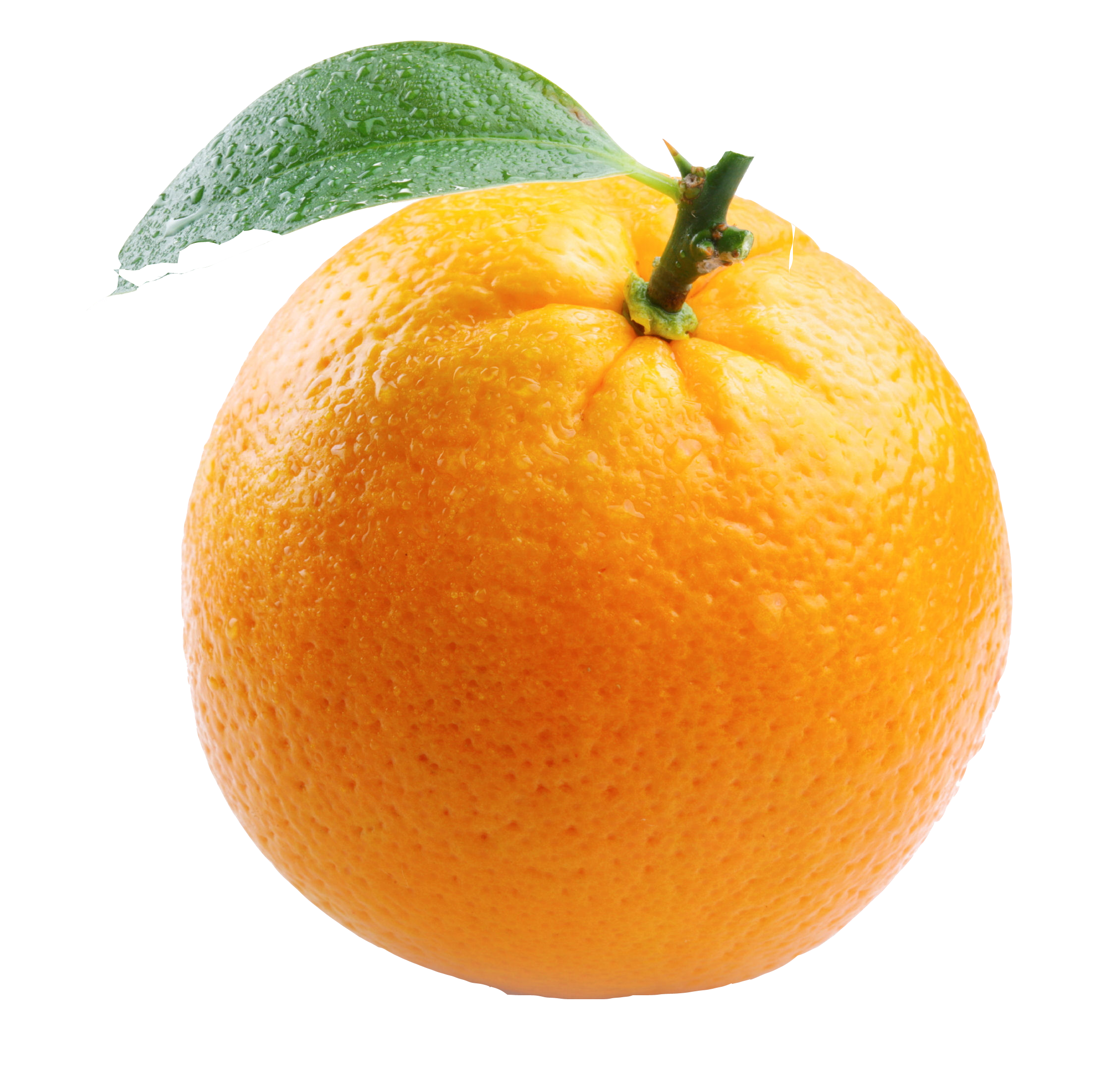 Free Orange PNG Transparent Images, Download Free Clip Art.
