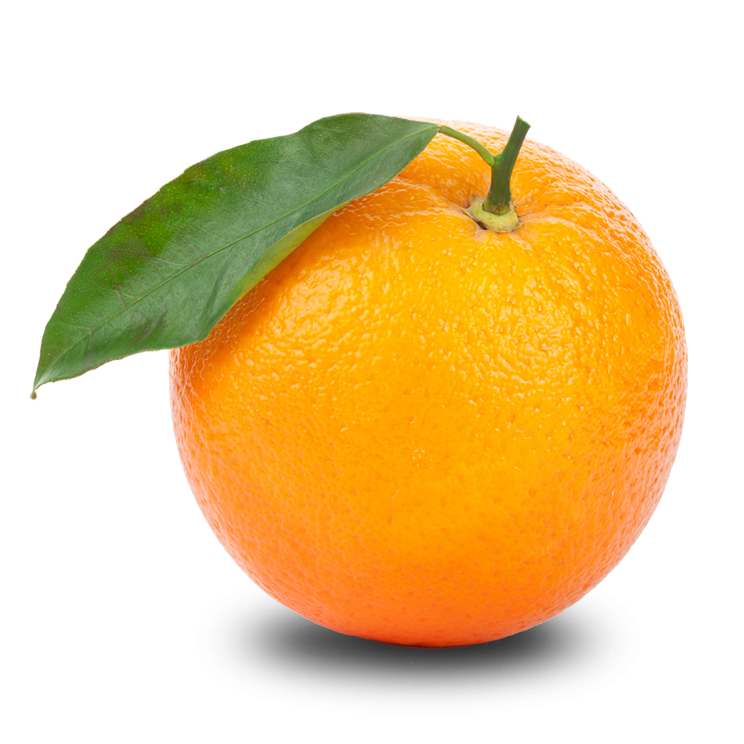 Free Orange PNG Transparent Images, Download Free Clip Art.
