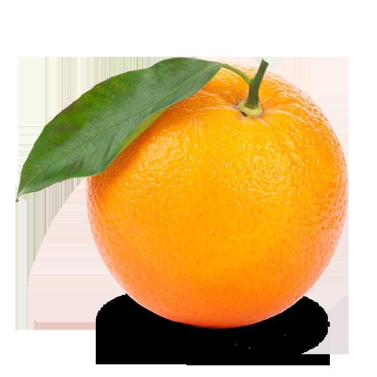 Orange PNG Transparent Images.