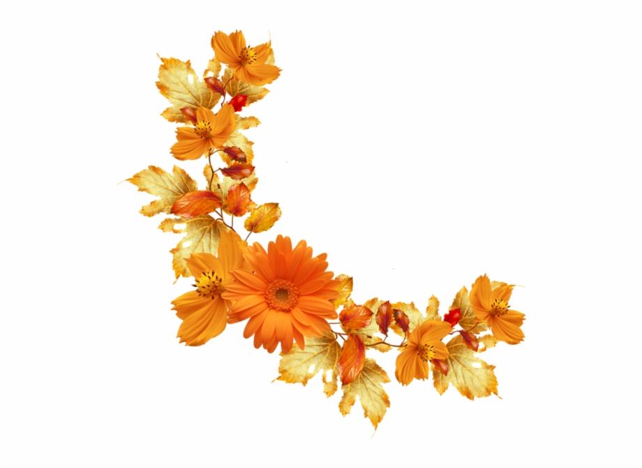 Orange Floral Border Png Image Background.