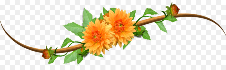 Orange Flower Png (93+ images in Collection) Page 3.