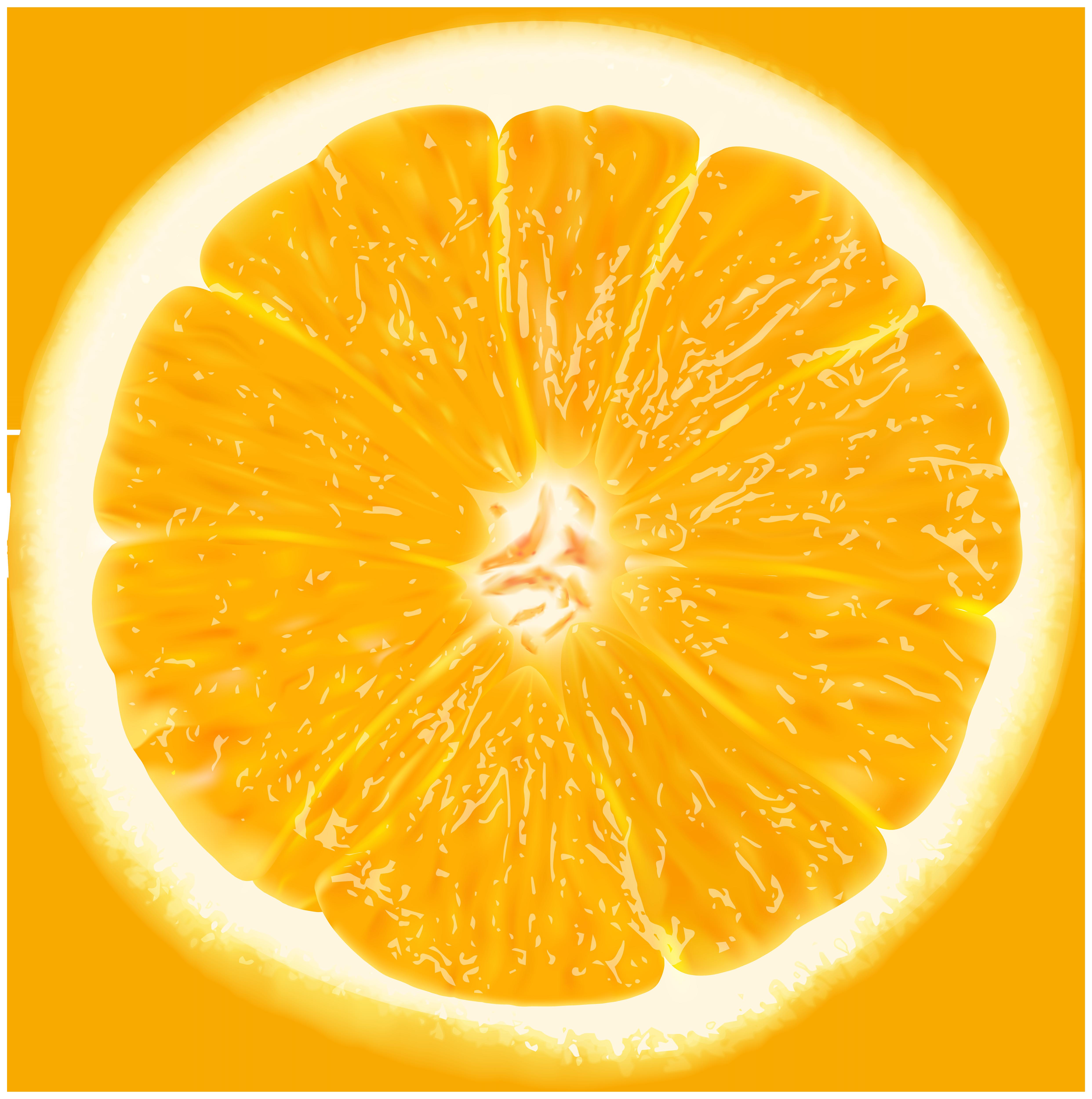 Orange Slice PNG Clip Art Image.