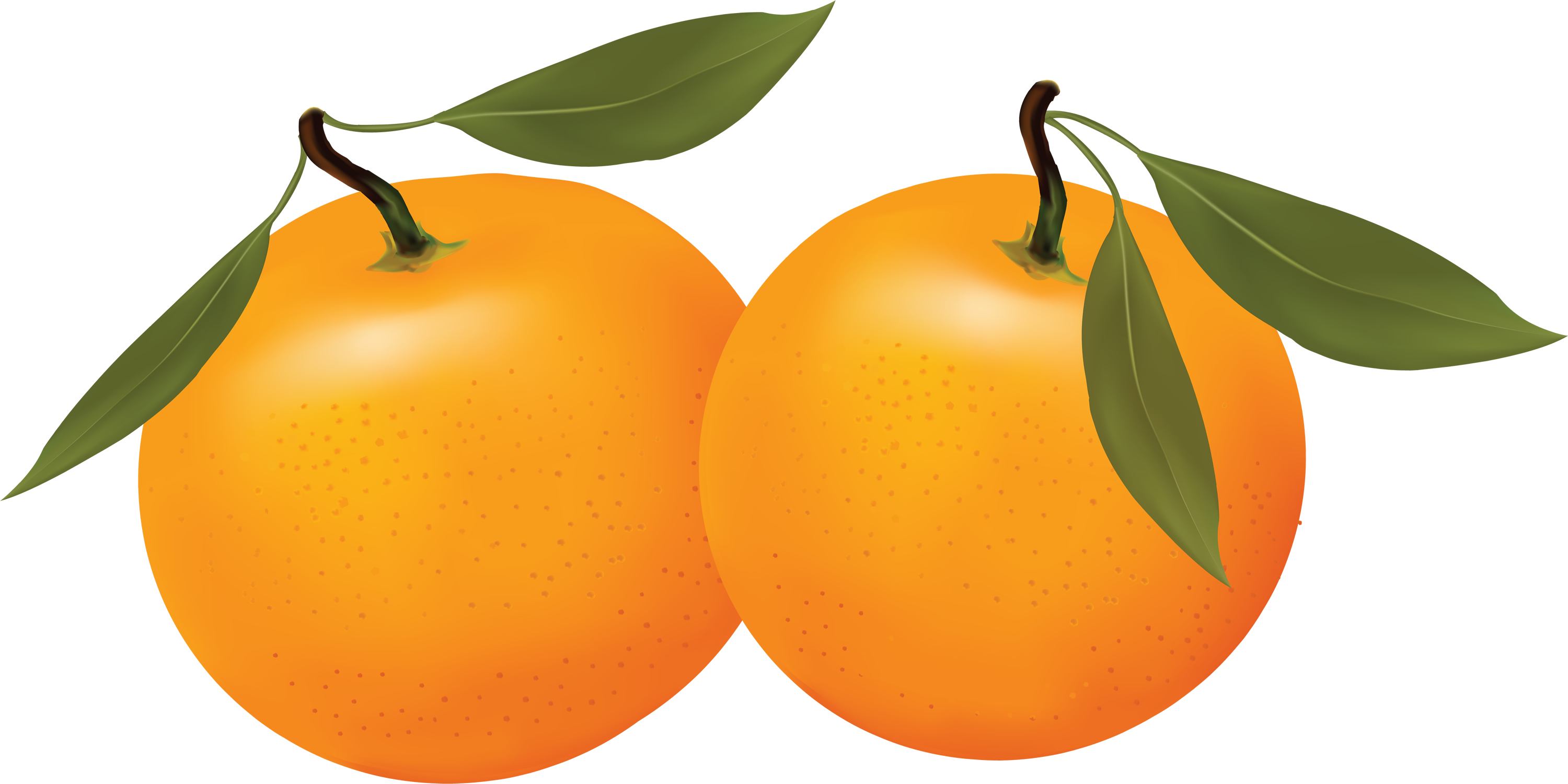 Best Orange Clip Art #16693.