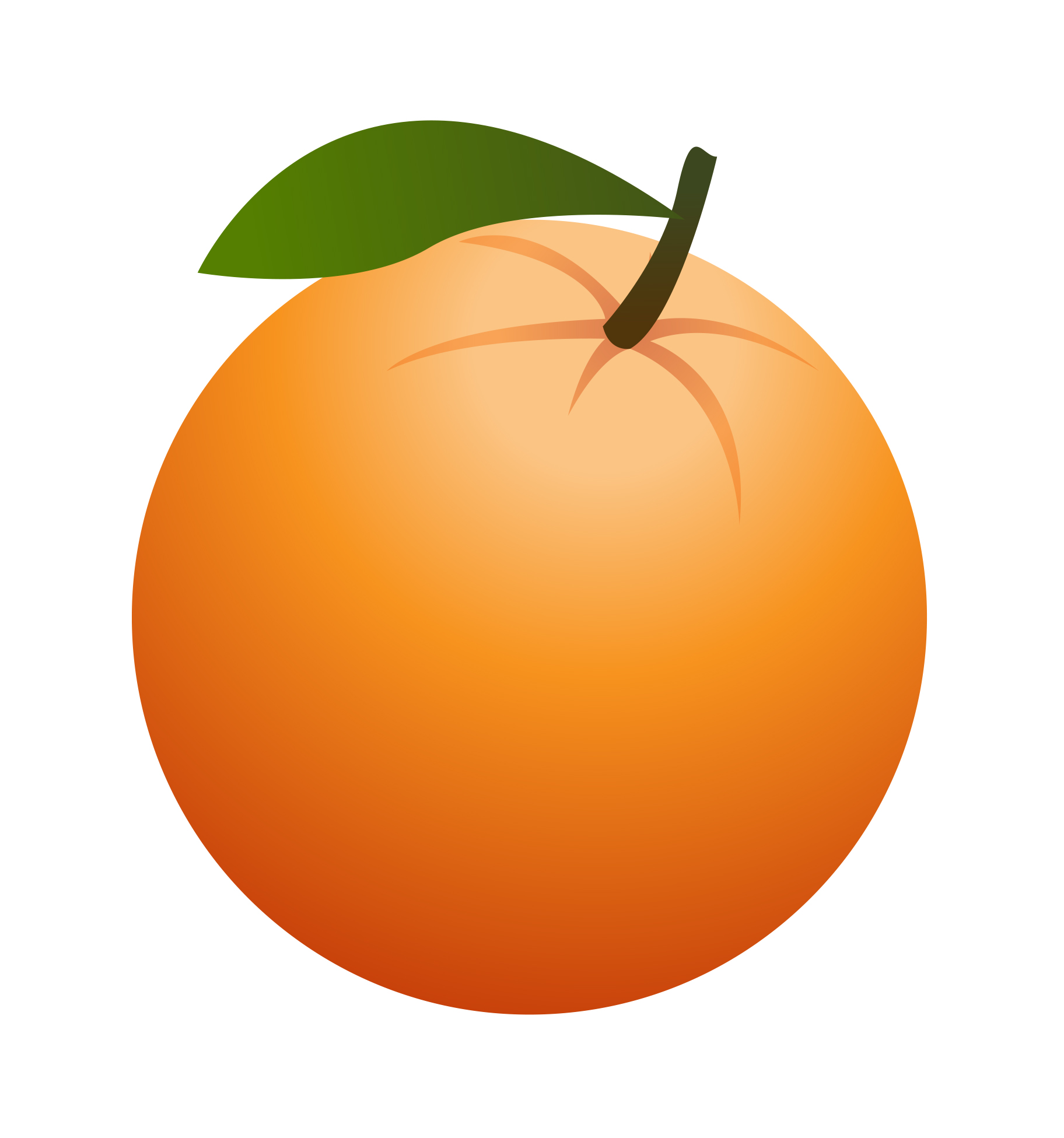 Orange fruit clipart kid 2.