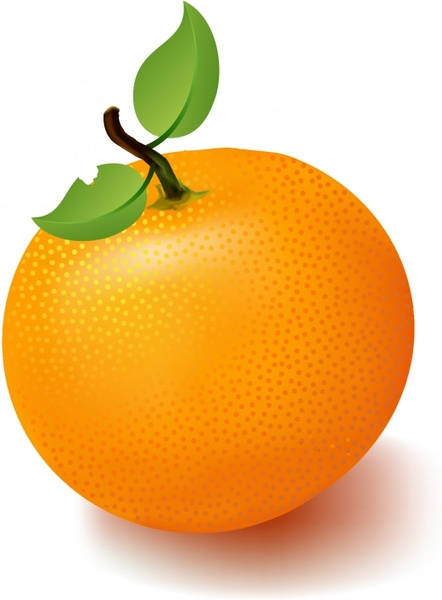 Orange fruit clipart 6 » Clipart Station.