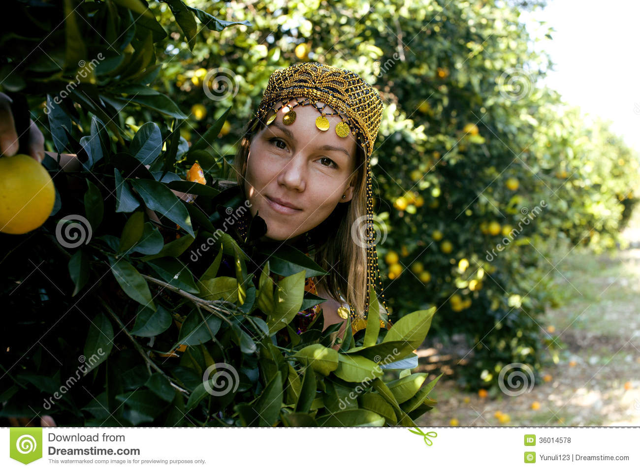 Pretty Islam Woman In Orange Grove Smiling Royalty Free Stock.