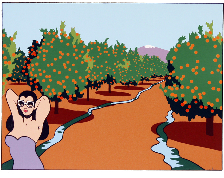 Showing post & media for Cartoon orange grove.