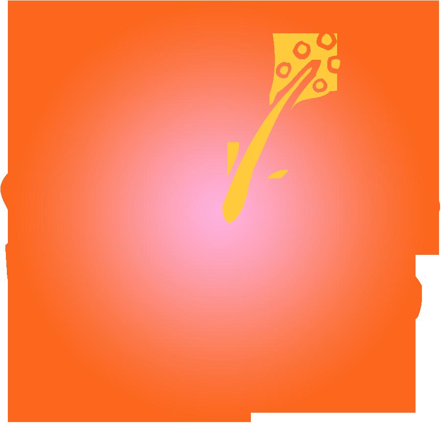 Orange Hibiscus Cliparts.