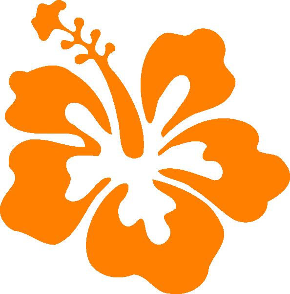 Showing post & media for Orange hibiscus cartoon.