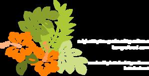 Orange Hibiscus Clip Art at Clker.com.