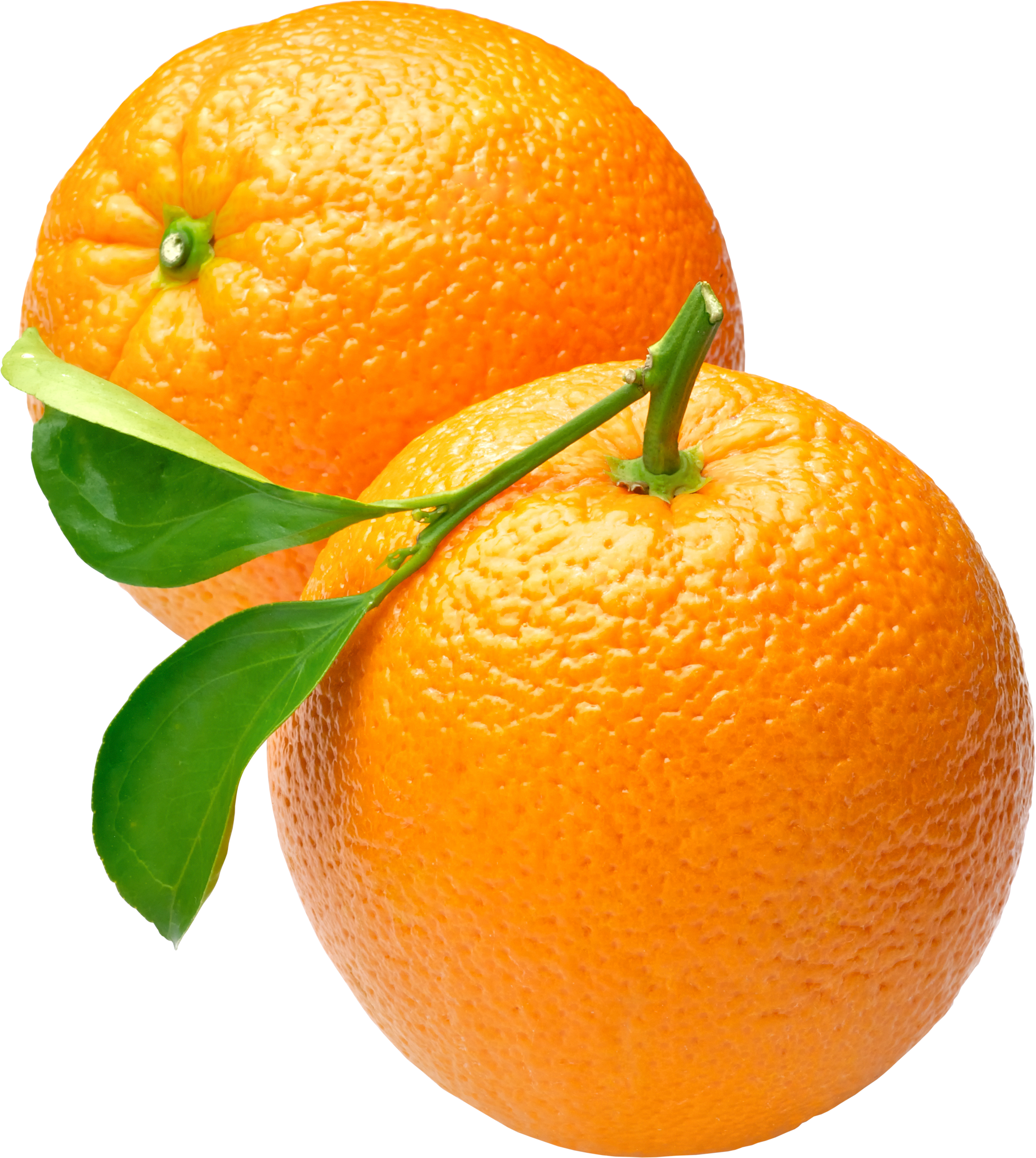 Orange Icon Clipart.