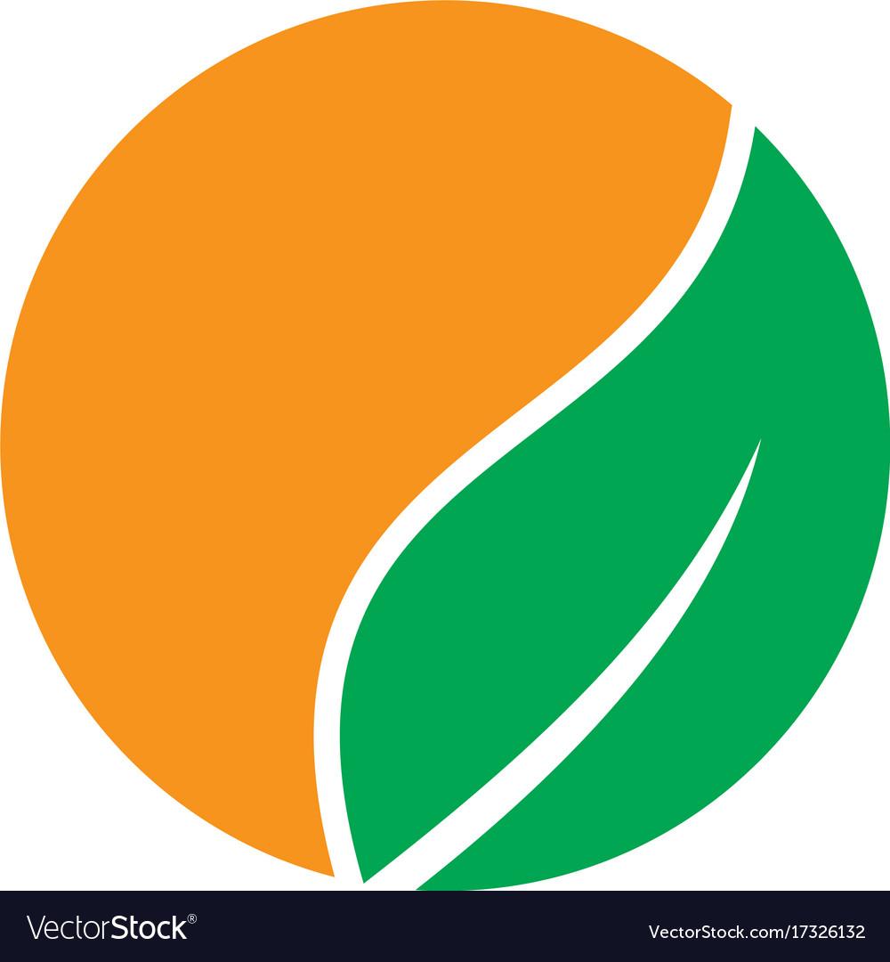 Circle orange leaf nature logo.