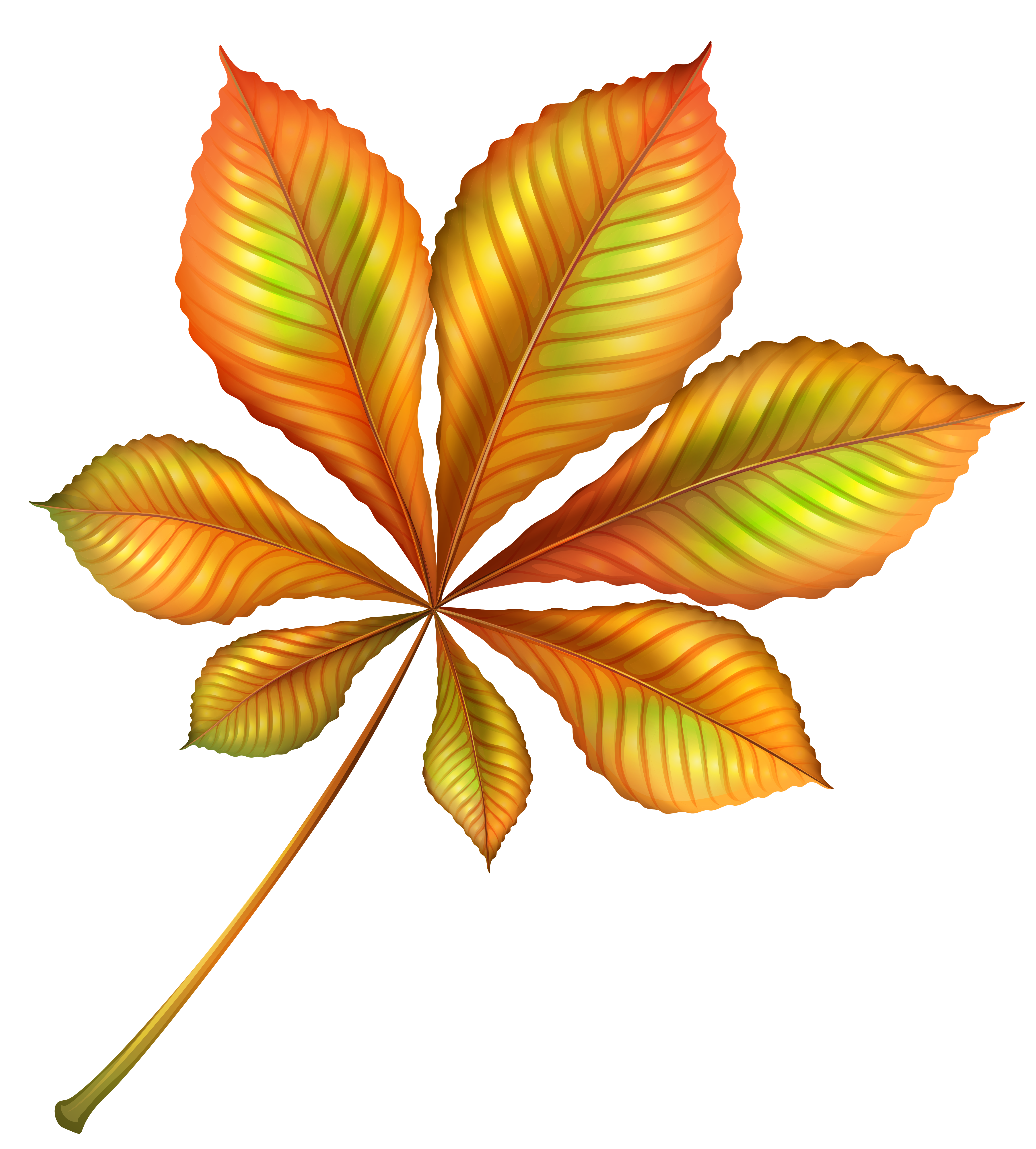 Beautiful Autumn Orange Leaf PNG Clipart Image.