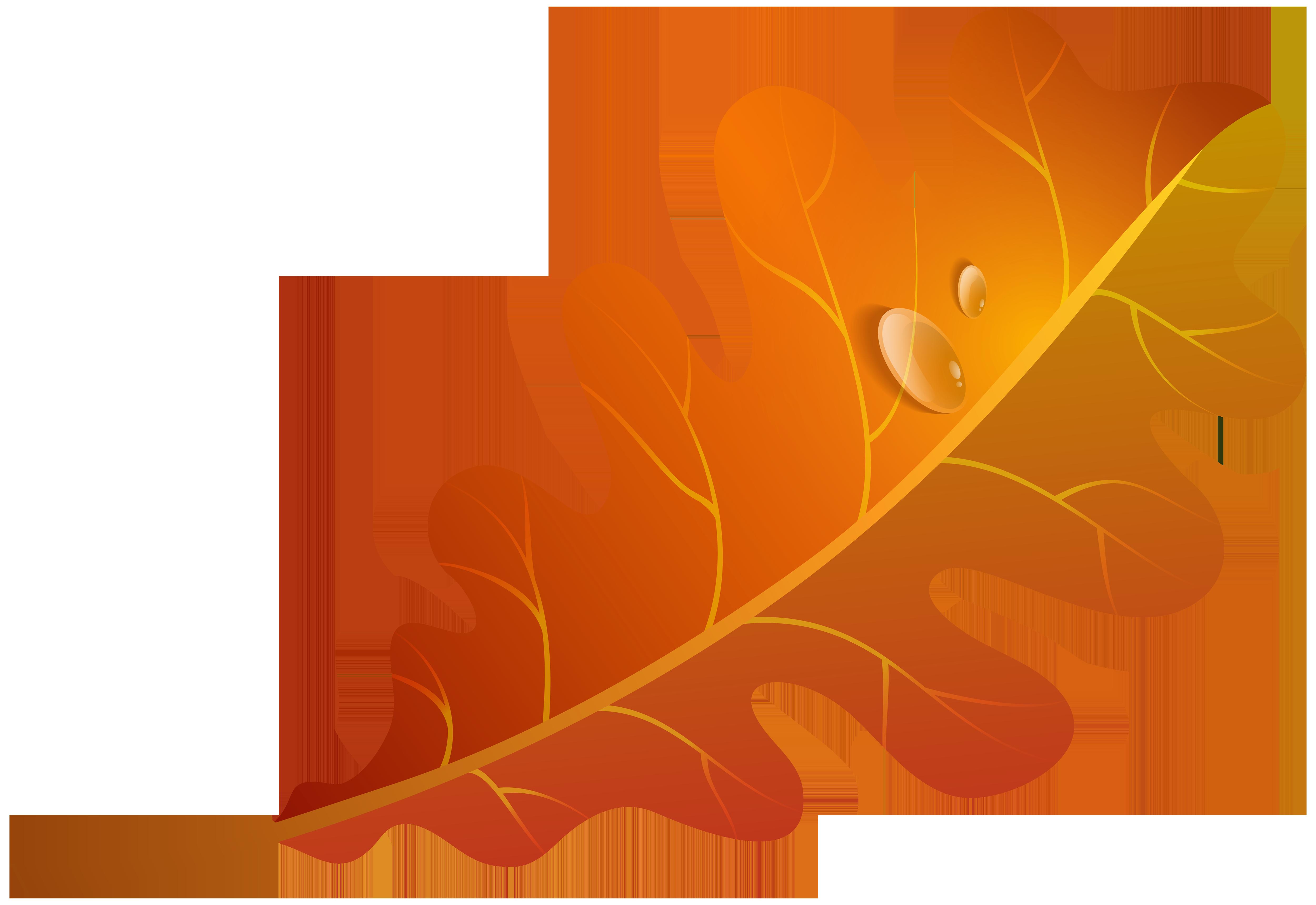 Fall Orange Leaf PNG Clipart Image.
