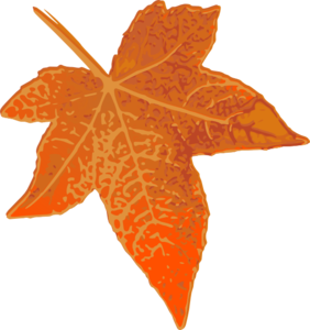 Orange Maple Leaf Clip Art at Clker.com.