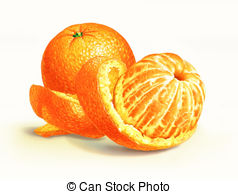 Orange peel Illustrations and Stock Art. 3,907 Orange peel.