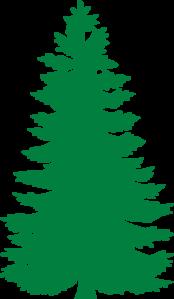 Orange pine tree clipart.
